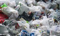 Ambientalistas pedem ao Governo dos Açores apoio ao transporte de resíduos para a Terceira