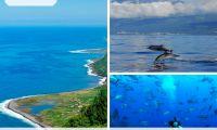 "Açores vencem categoria ""Best of Nature"" nos Sustainable Destination Awards"