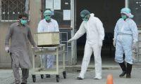 Covid-19: Seguradoras têm 1,5 ME para apoiar familiares de profissionais mortos