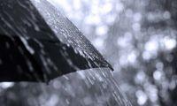 Mau tempo: Proteção Civil alerta para previsão de chuva forte nos Açores