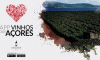 Já estão disponíveis uma APP e um Guia para divulgar os vinhos certificados dos Açores