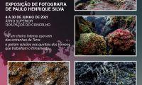 Furnas, Mistérios e Agulhas - Exposição de fotografia até 30 de Junho nos paços do Concelho de Angra