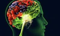 Governo dos Açores apoia investigação na área das doenças neurodegenerativas