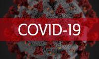 Portugal com mais 275 mortes e 11.721 novos casos de covid-19