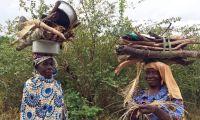 Cabo Delgado: Escassez de alimentos desespera a população em Palma