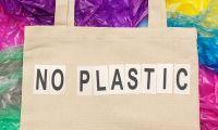 Representante da República para os Açores veta diploma sobre redução de plástico