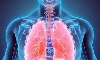 """Inglaterra vai disponibilizar medicamento """"revolucionário"""" para o cancro do pulmão"""