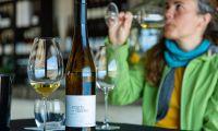 'Wine In Azores' com cerca de 1.000 vinhos e 70 produtores