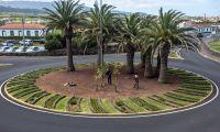 Câmara Municipal aposta na requalificação e embelezamento dos espaços verdes na Praia da Vitória