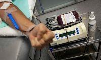 Dadores de sangue já podem agendar dádiva no 'site' do IPO de Lisboa